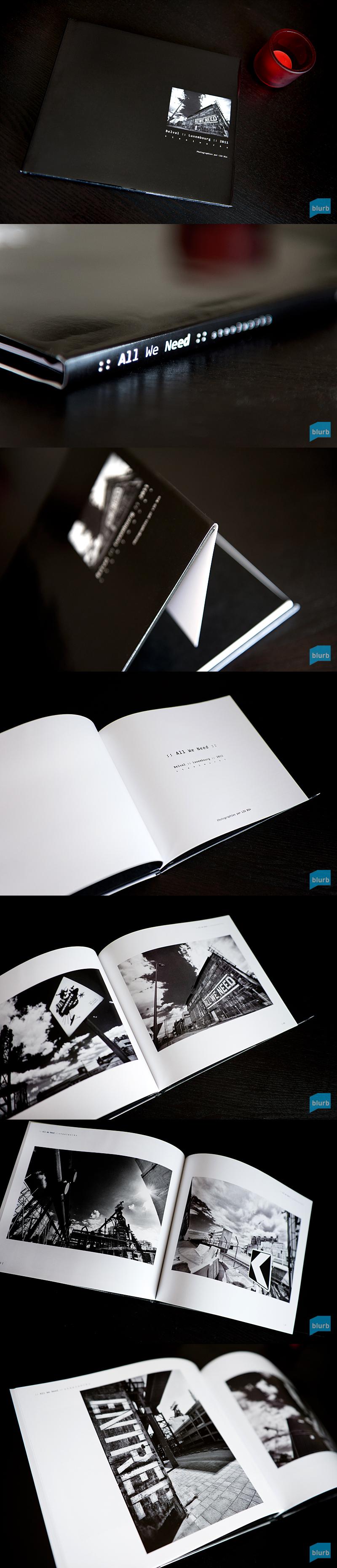 Blurb Book Light Room Grid Means