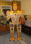 Wooden Robot Stereo System