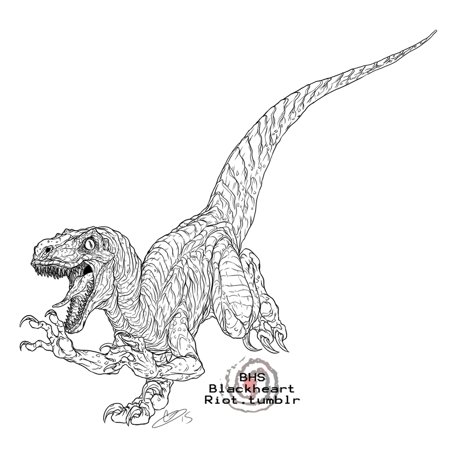 velociraptor jurassic park coloring pages - photo#3