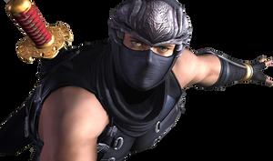 Ninja Gaiden Sigma by Killroyy