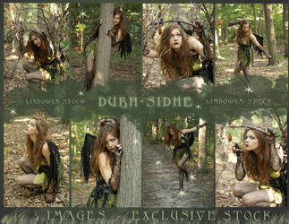 Exclusive Sidhe Stock Pack by lindowyn-stock