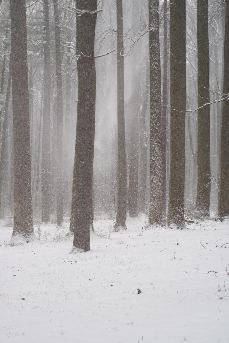 OMG SNOW EEEEE by lindowyn-stock