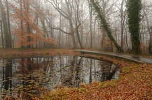 LHP: Foggy Pond by lindowyn-stock