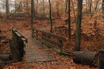 LHP: Bridge in the Forest