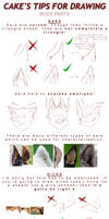 tutorial Cake's tips for drawing: BODY PARTS
