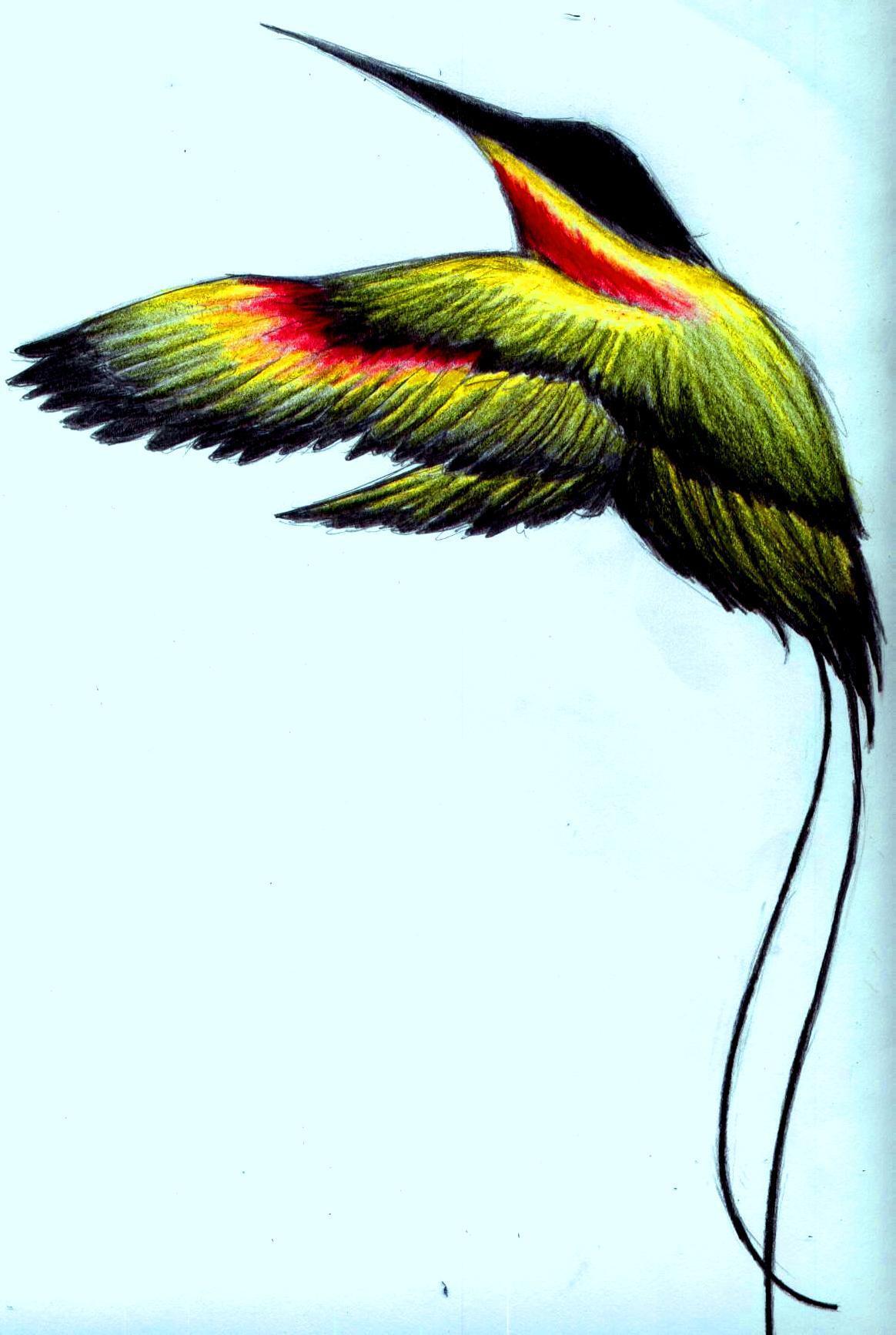 jamaican national bird tattoo the image kid has it. Black Bedroom Furniture Sets. Home Design Ideas