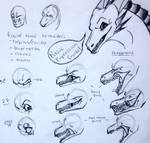 [Tutorial] Basic Dragon Expressions!