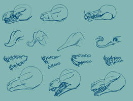 Tooth Study 1 by Mollish