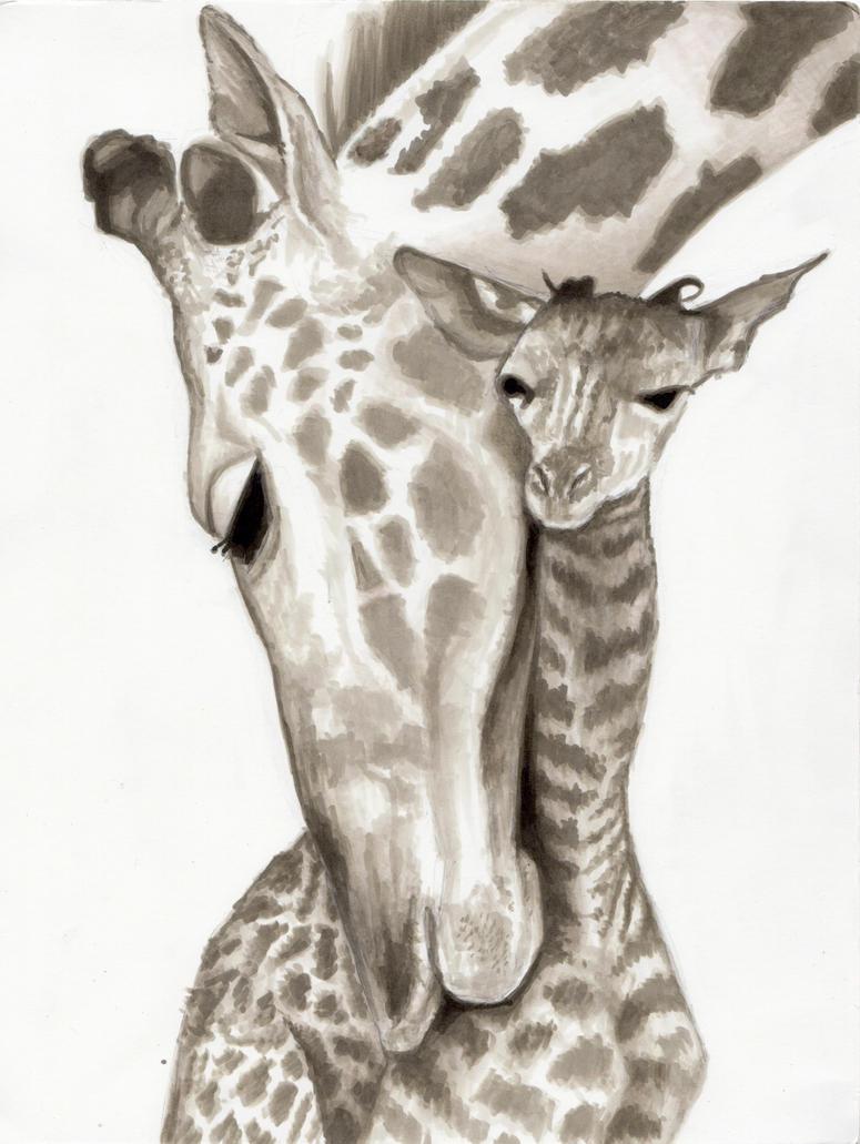 Giraffe by BauerPower24777 on DeviantArt Cool Giraffe Drawing
