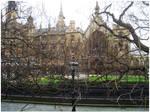 Parlament in Colour