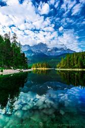 Nature Mirror by cytrinox