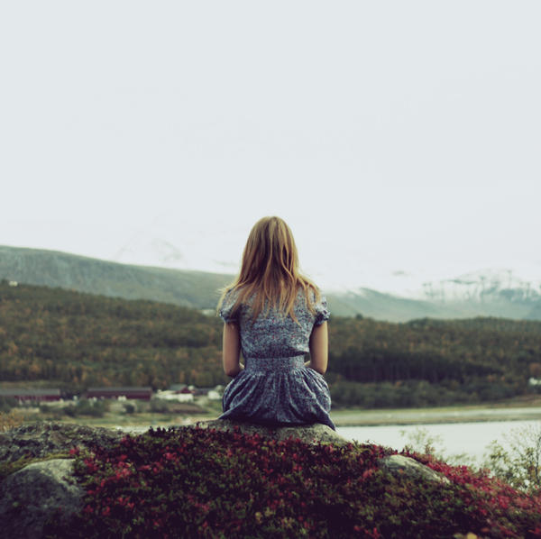 the view by nikolinelr