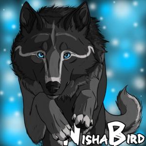 NishaBird's Profile Picture