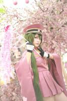 1000 Sakura [I] by AsumiChan