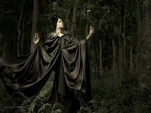 Maleficent: Queen of Moors