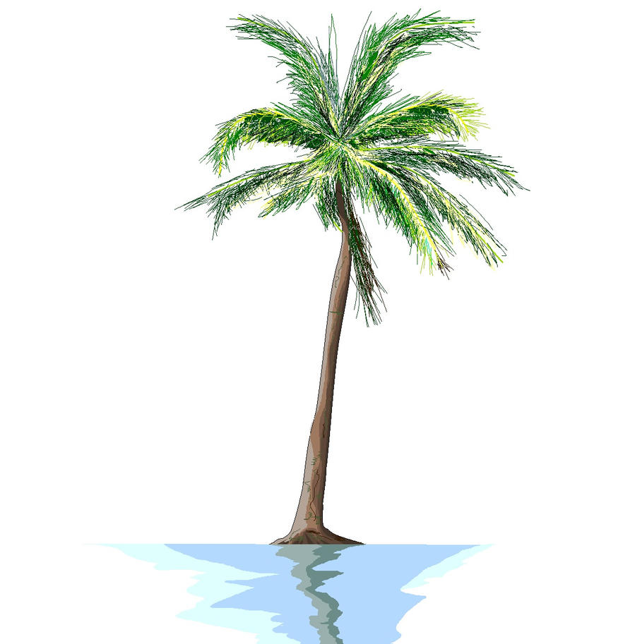 palm tree by Ant787 on DeviantArt