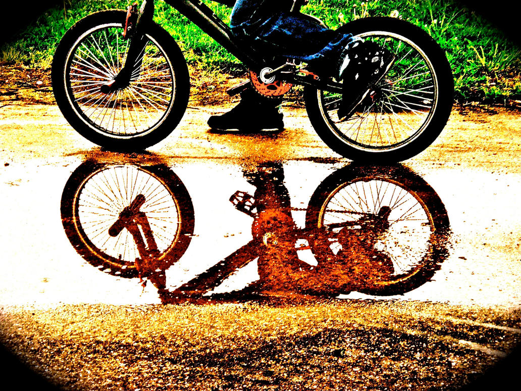 learning to ride a bike essay