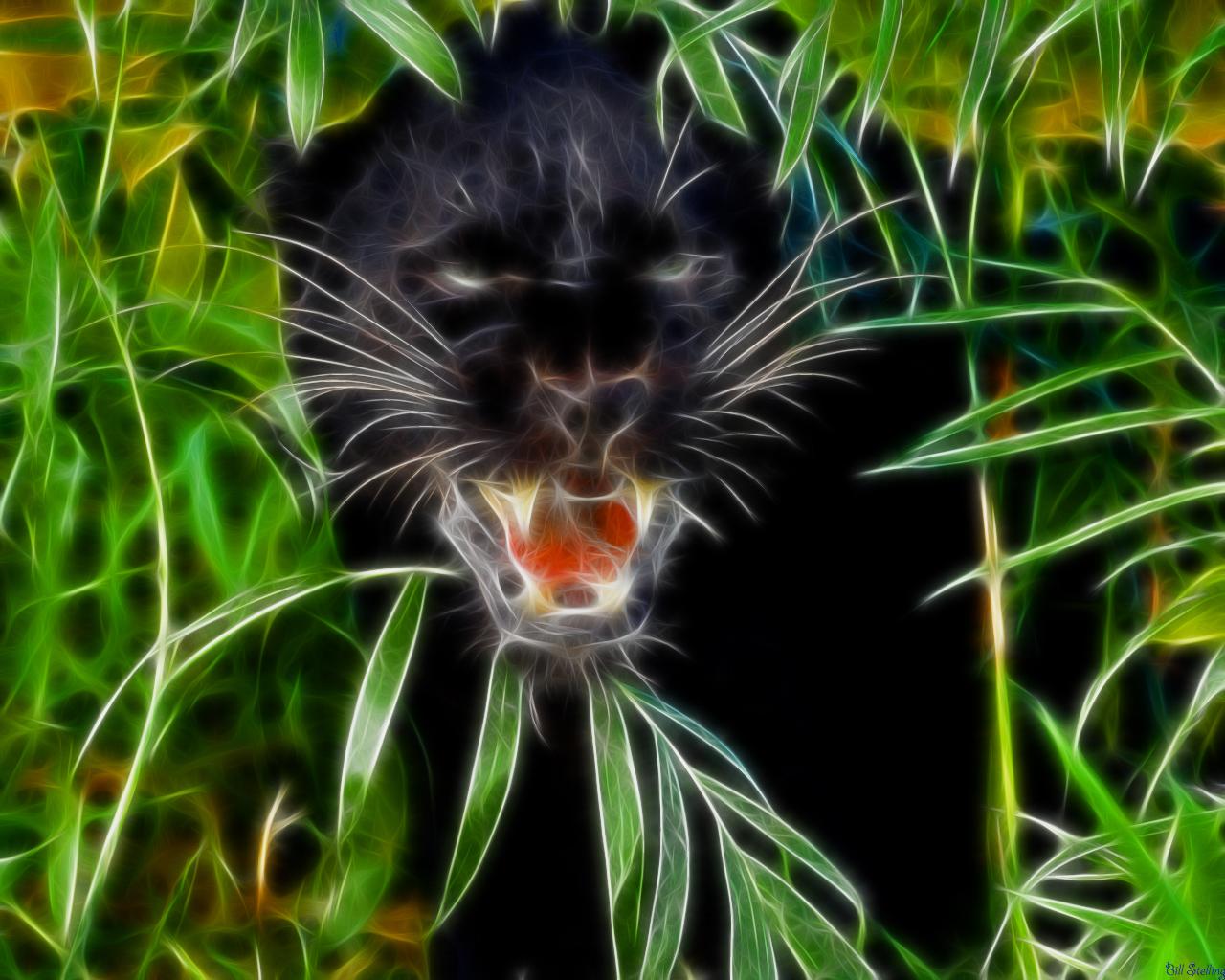 Black Panther on the Hunt by billstelling on DeviantArt