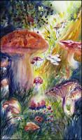 Kingdom for a mushroom
