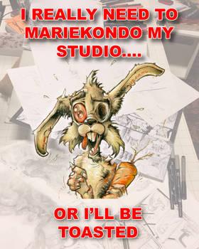 I need to Mariekondo my studio