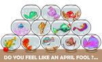 Do you feel like an April fool ?