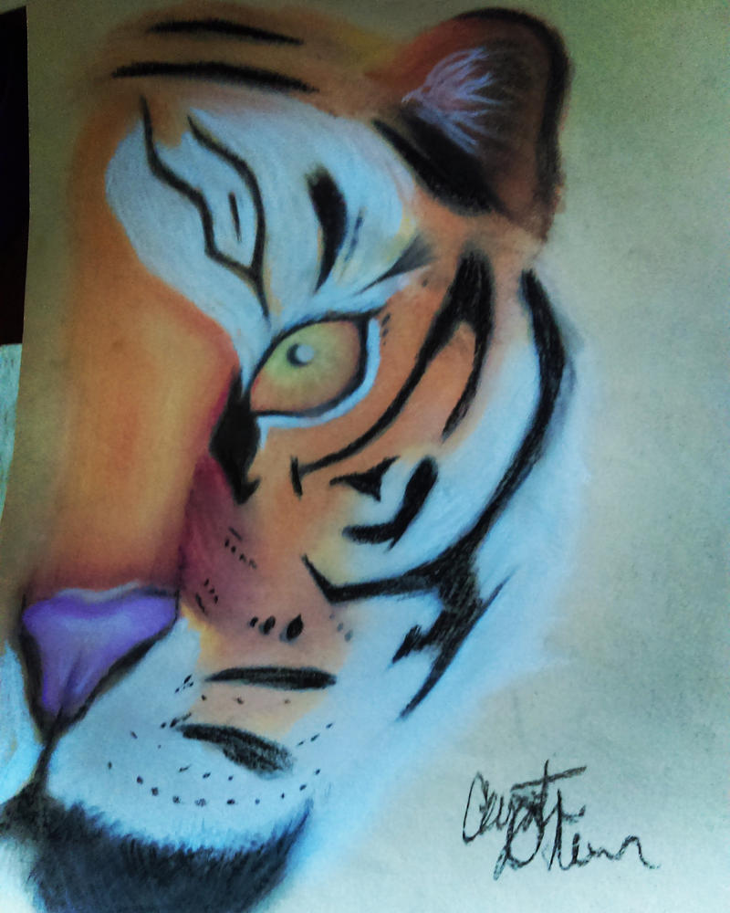 Eye of the Tiger (finished) by MysticTaloness