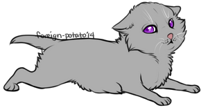 Warrior Cat Lines: Kit (.psd and MS paint version)