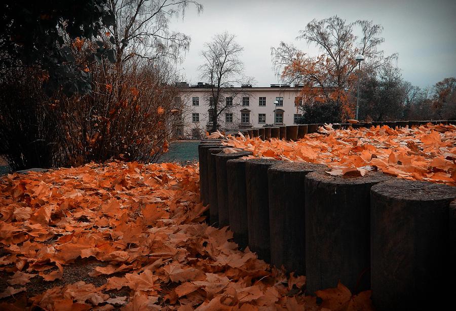 Golden leaves2 by MissLumikki