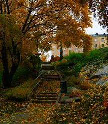 Golden leaves3