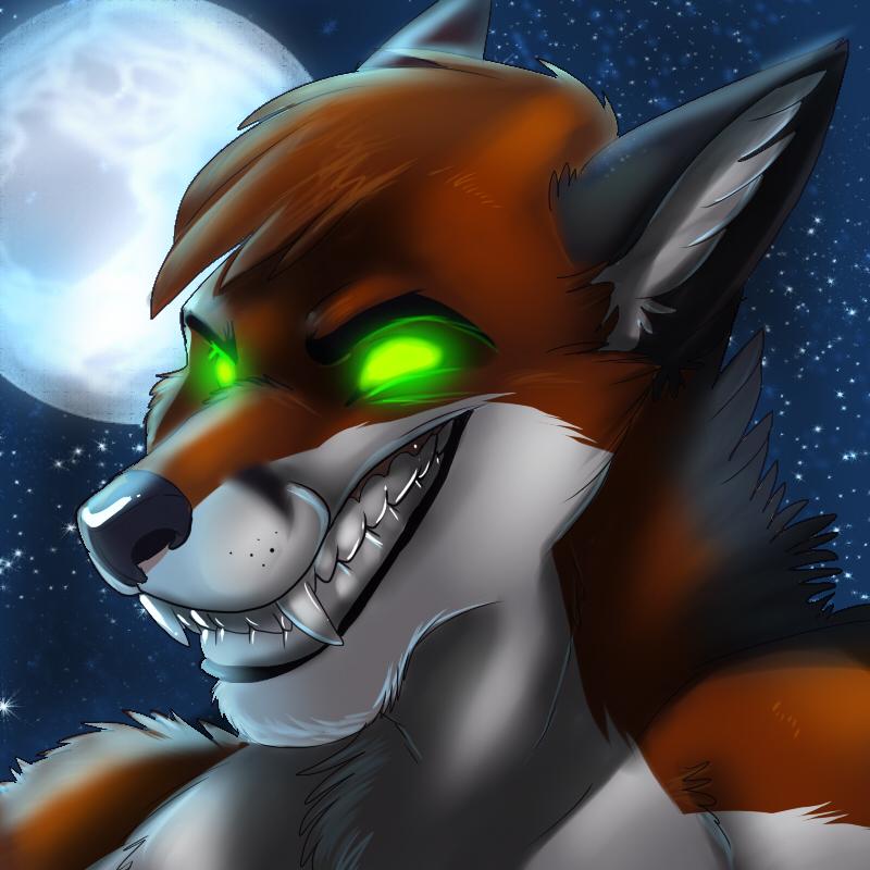 werewolf vs werefox wwwpixsharkcom images galleries