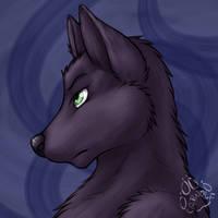 Profile: Drake Werewolf by JasonWerefox