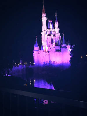 Cinderella Castle At Night by HavingHope5