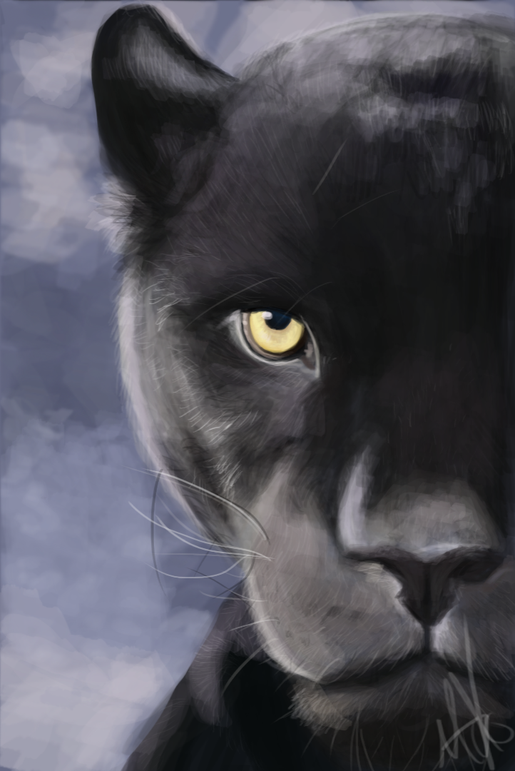 Black Panther by MiesDo