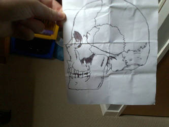 Skull Drawing  by NerdyScot