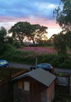 Sunset from my window..