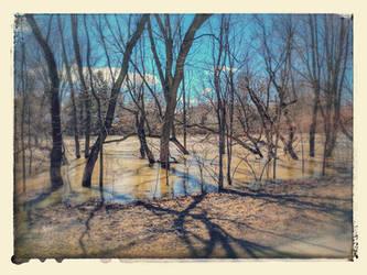 South Nation River by Schvenn