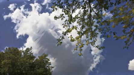 Cloud by Schvenn