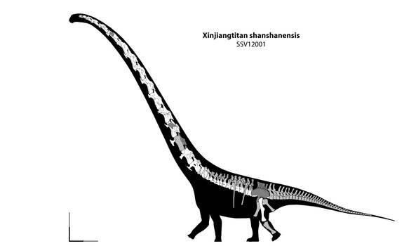 Xinjiangtitan shanshanensis