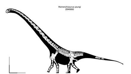 Mamenchisaurus youngi