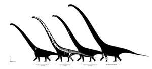 Big Sauropods of Xinjiang