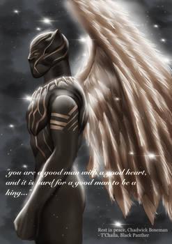 Wakanda forever...