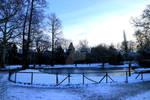 Jardin botanique (2019-01-31) 8 by ValerieVivegnis