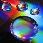 pawprint droplets II