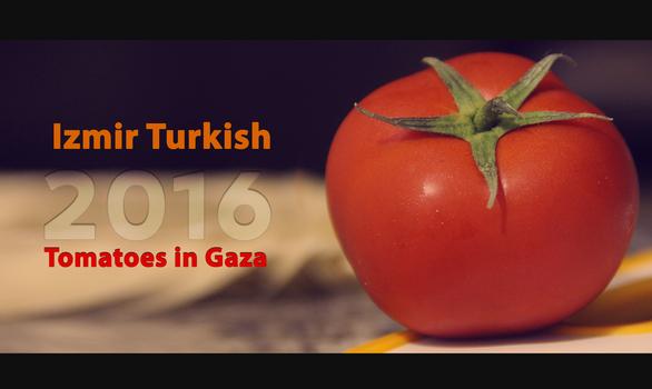 Tomatoes in Gaza 2016