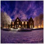Purple for Pleasure by JeRoenMurre