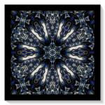 image3A2168 mirror11