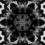 image3A14686 mirror49
