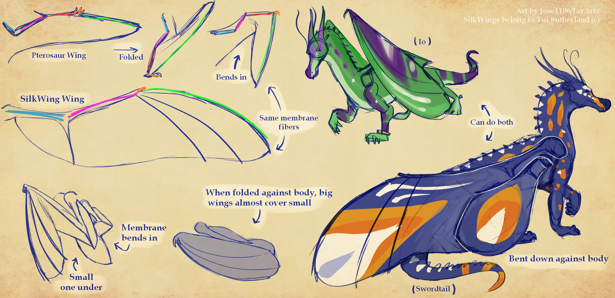 Silkwing Wings Study Theory Thing By Jose1106 On Deviantart