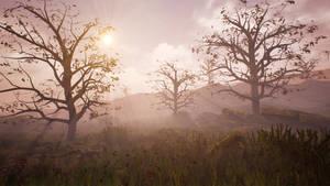 Horrid Dawn on Cursed Lands