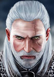 The Witcher: Geralt of Rivia by TheBRStory